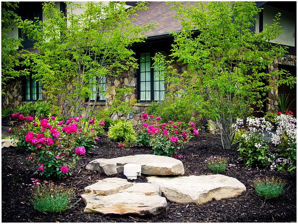 landscaping - before and after - hoot landscape and design
